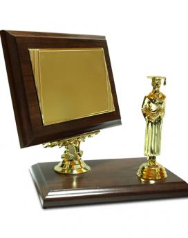 Plachete - Medalii